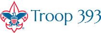 Troop 393